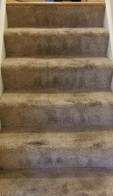 Stained stairway carpet