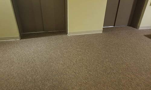 commercial carpet cleaning elevator area after